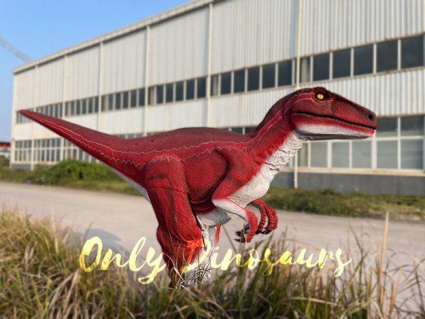 Jurassic-Park-Red-Raptor-Dinosaur-Costume(5)