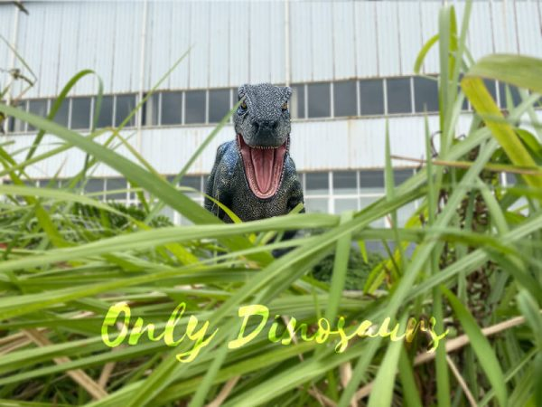 Jurassic-Park-Stripe-Raptor-Dinosaur-Costume(2)