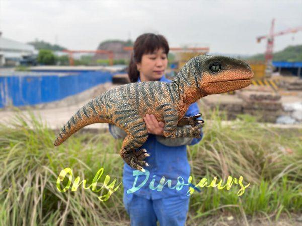 Jurassic-World-Baby-Velociraptor-Puppet1