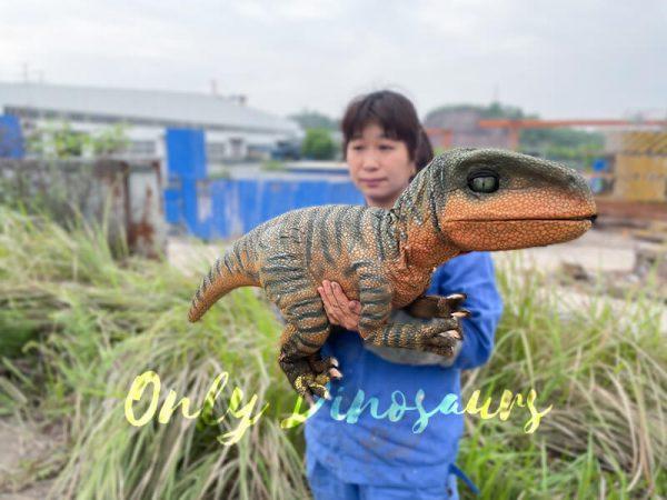 Jurassic-World-Baby-Velociraptor-Puppet2