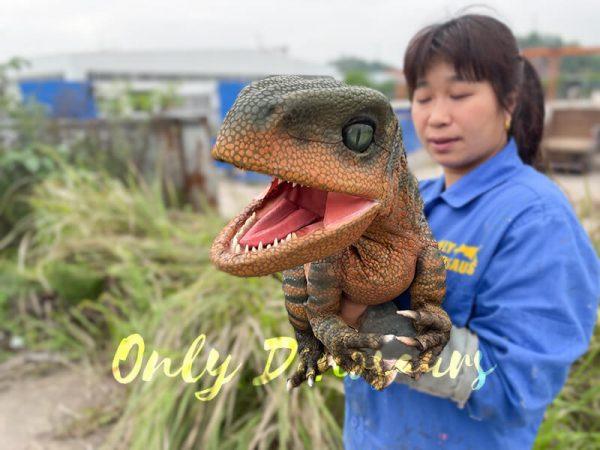 Jurassic-World-Baby-Velociraptor-Puppet3