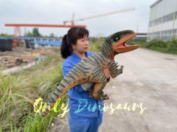 Jurassic-World-Baby-Velociraptor-Puppet4