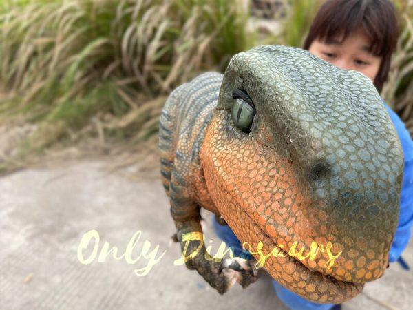 Jurassic-World-Baby-Velociraptor-Puppet6