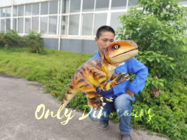 Lifelike-Customizable-Baby-Raptor-Dinosaur-Hand-Puppet3