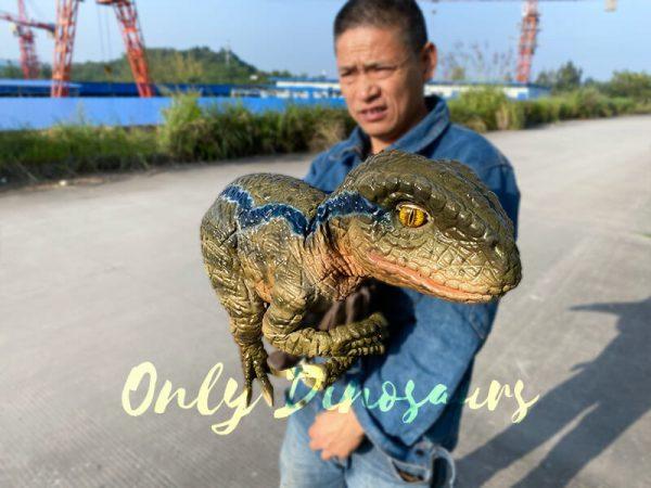 Lively-Baby-Raptor-Holder-Puppet(2)-1