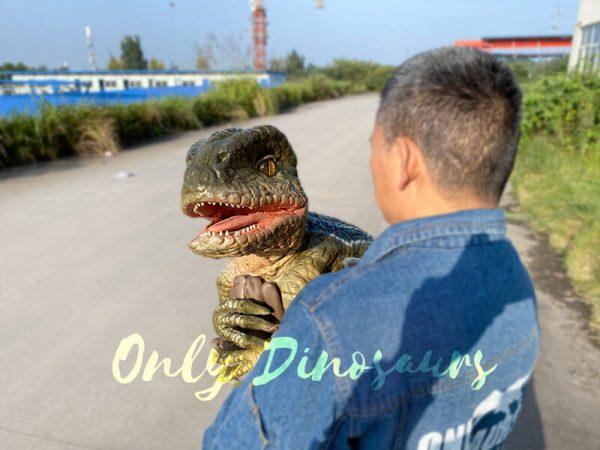 Lively-Baby-Raptor-Holder-Puppet(5)-1