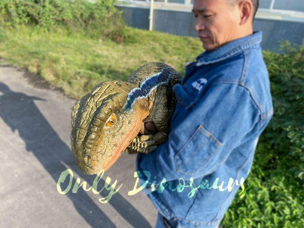Lively-Baby-Raptor-Holder-Puppet(6)-1