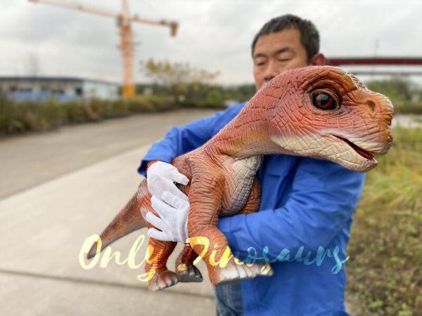 Mind-blowing-Baby-Brachiosaurus-Puppet5