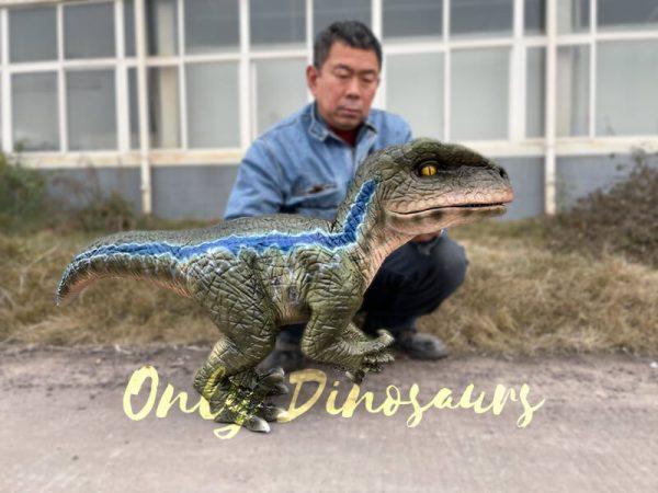 Naughty-Full-Body-Velociraptor-Puppet2
