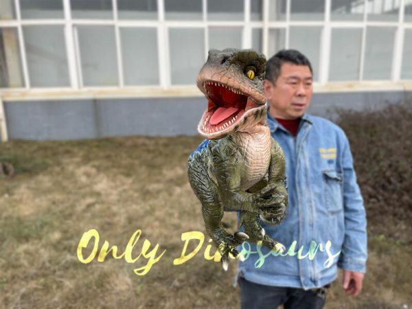 Naughty-Full-Body-Velociraptor-Puppet4