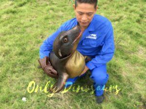 Portable Sea Lion Puppet