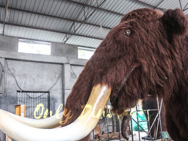 Prehistoric-Life-size-Animatronic-Animal-Woolly-Mammoth-4