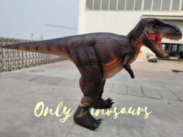 Realistic-Invisible-Leg-T-Rex-Dinosaur-Costume(4)