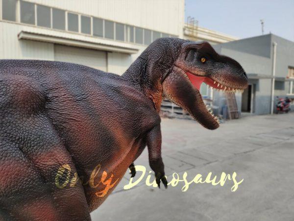 Realistic-Invisible-Leg-T-Rex-Dinosaur-Costume5
