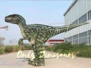 Realistic-Velociraptor-Hidden-Legs-Dinosaur-Costume1
