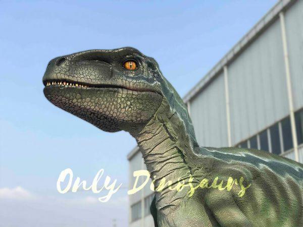 Realistic-Velociraptor-Hidden-Legs-Dinosaur-Costume2