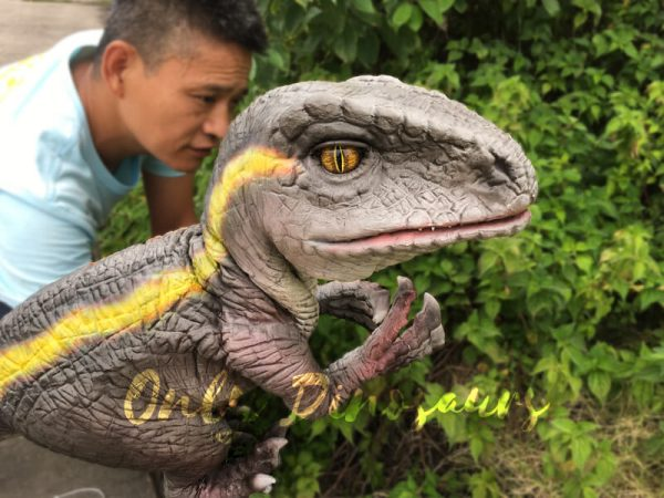 Realistic-Yellow-Striped-Baby-Velociraptor-Puppet6