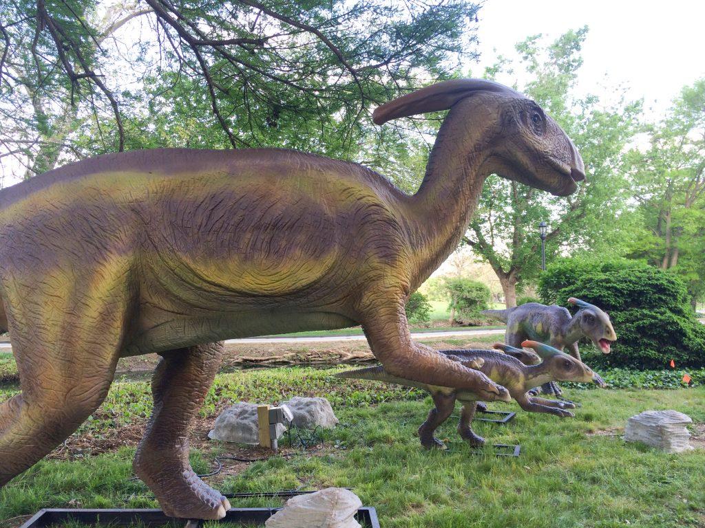 Six-Interesting-Dinosaur-Descendants-That-Live-On-Earth-Today-2