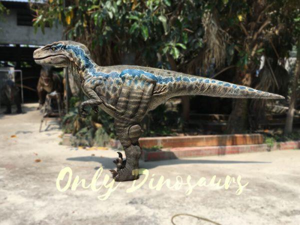 Super-Realistic-Single-man-Velociraptor-Costume-with-Hidden-Legs4