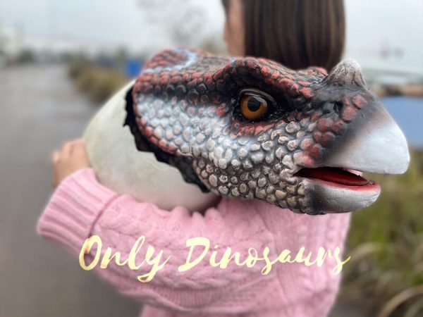 Superb-Handmade-Baby-Triceratops-Hatching-with-Fine-Details1