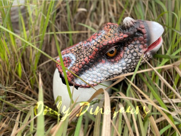 Superb-Handmade-Baby-Triceratops-Hatching-with-Fine-Details6