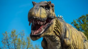 Top-12-Dinosaur-Cafe-Places-In-The-US-2021-Reviews