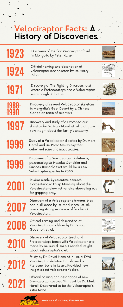 Velociraptor-Timeline-1