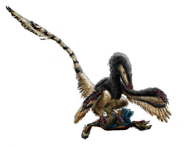 Velociraptor_restraining_an_oviraptorosaur_by_durbed