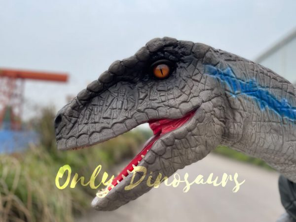 Vivid-Wearable-Hand-Control-Raptor-Shoulder-Puppet6