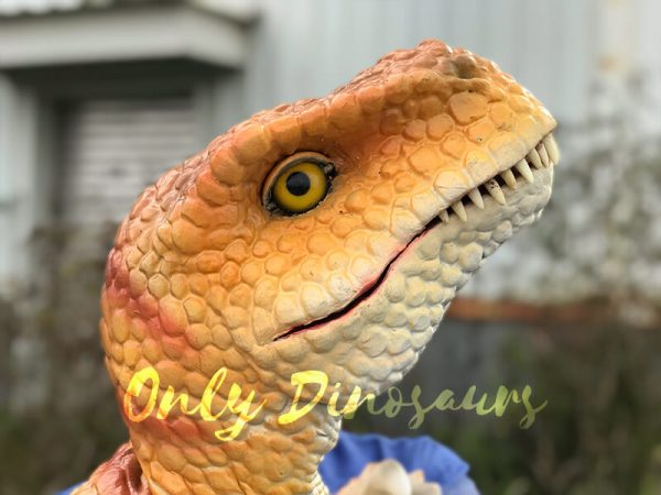 Yellow-Handheld-Baby-Tyrannosaurus-Puppet-with-Adorable-appearance4