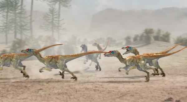 japa2-velociraptor-pack