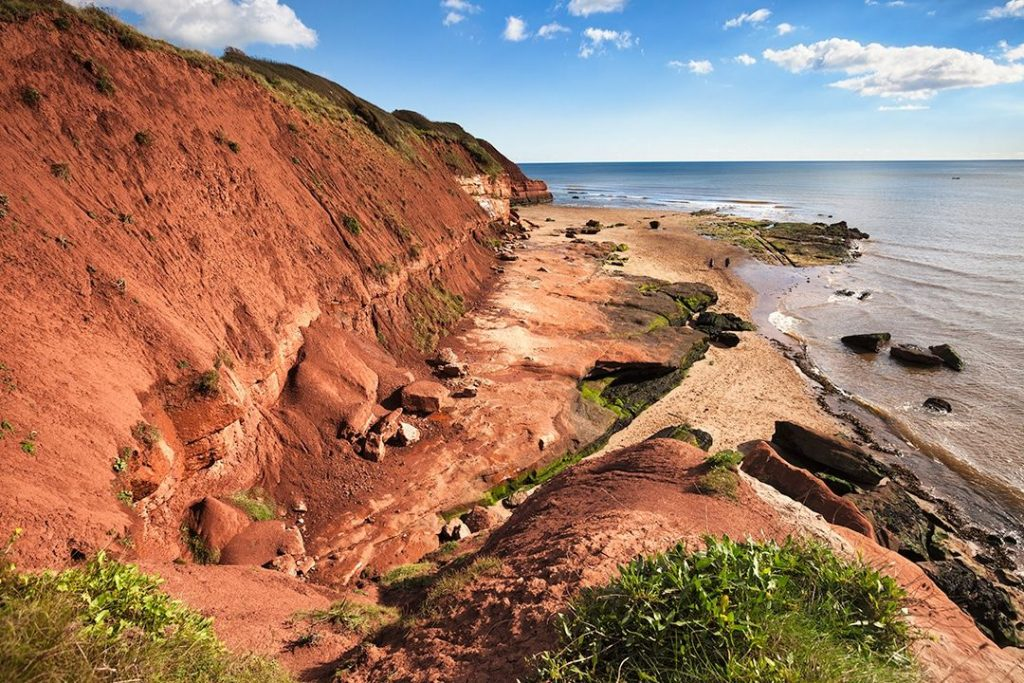 Discover-a-lost-world-on-the-Jurassic-Coast-Visit-Exmouth