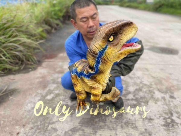 Fantastic-Raptor-Dinosaur-Full-body-Hand-Puppet6