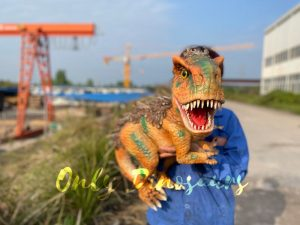 Feathered Baby T-Rex Dino Puppet for Sale