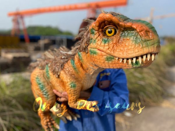 Feathered-Baby-T-Rex-Dino-Puppet-for-Sale2