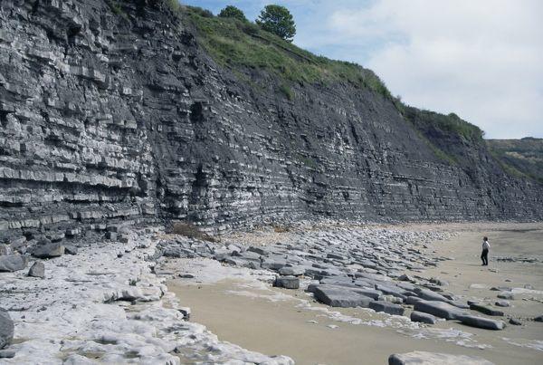 Fine-Art-Print_-Sedimentary-rocks-blue-lias-shale-limestone-sequences-Lyme-Regis-Jurassic-coast
