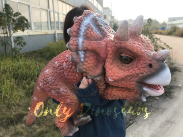 Intelligent-Baby-Triceratops-Dinosaur-Puppet4