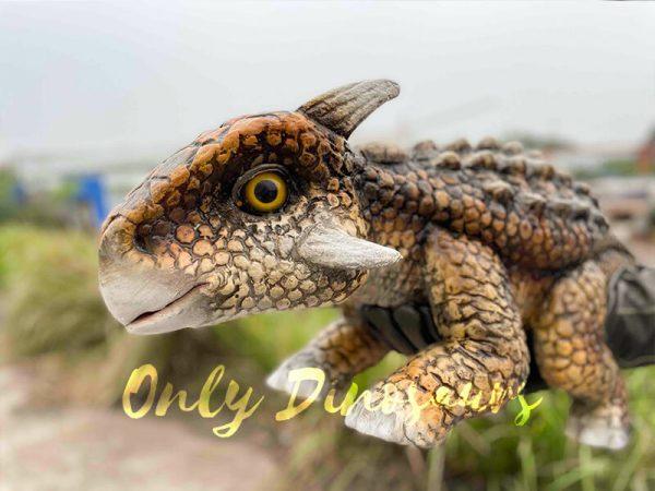 Intriguing-Baby-Ankylosaur-Hand-Puppet2