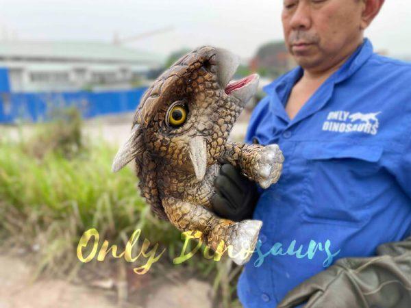 Intriguing-Baby-Ankylosaur-Hand-Puppet3