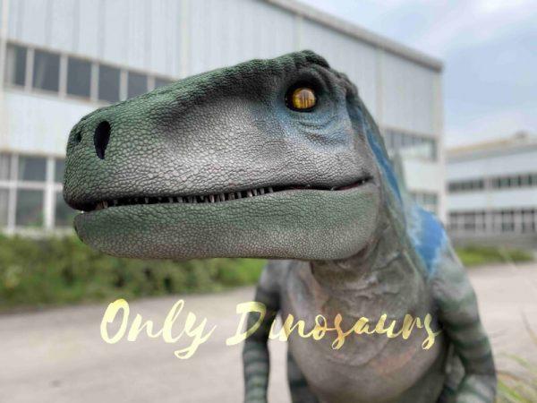 Jurassic-Lifelike-Velociraptor-Dinosaur-Costume-for-Sale2