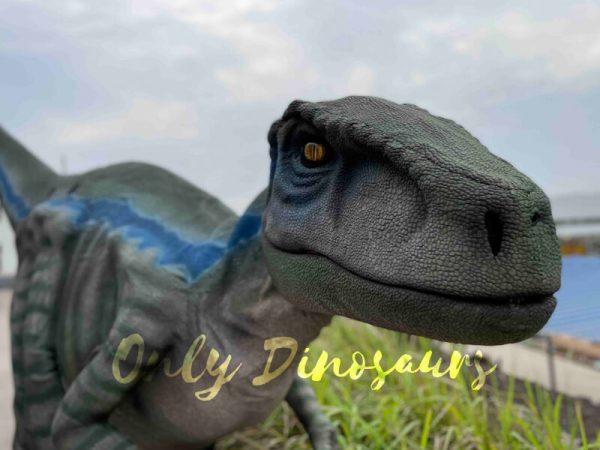 Jurassic-Lifelike-Velociraptor-Dinosaur-Costume-for-Sale6