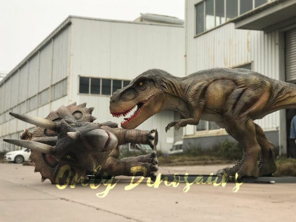 Life-Size-T-rex-Dinosaur-Hunted-Triceratops6