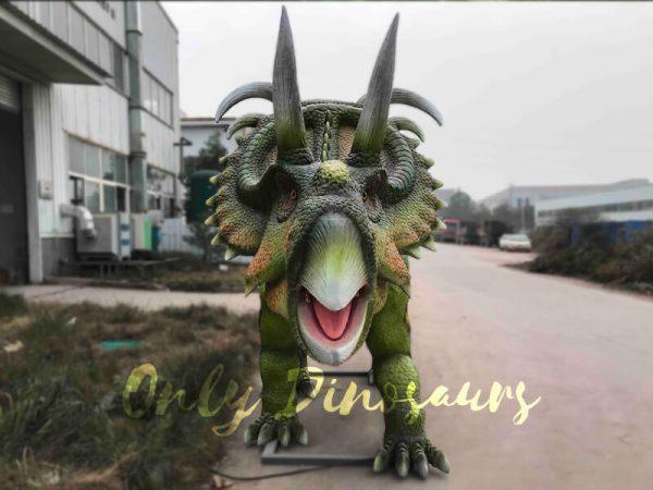 Life-size-Albertaceratops-Animatronic-Dinosaur-Model1