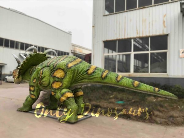 Life-size-Albertaceratops-Animatronic-Dinosaur-Model2