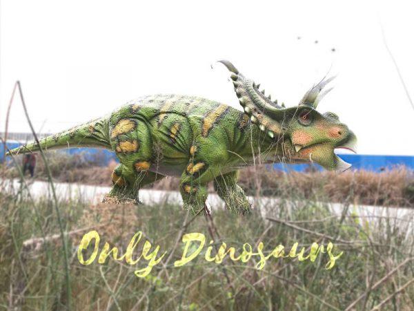 Life-size-Albertaceratops-Animatronic-Dinosaur-Model5