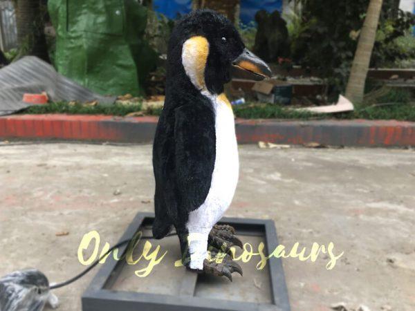Lifelike-Animatronic-Baby-Penguin5