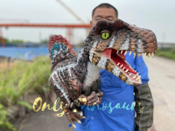 Lifelike-Dinosaur-Spinosaurus-Puppet-for-Sale3