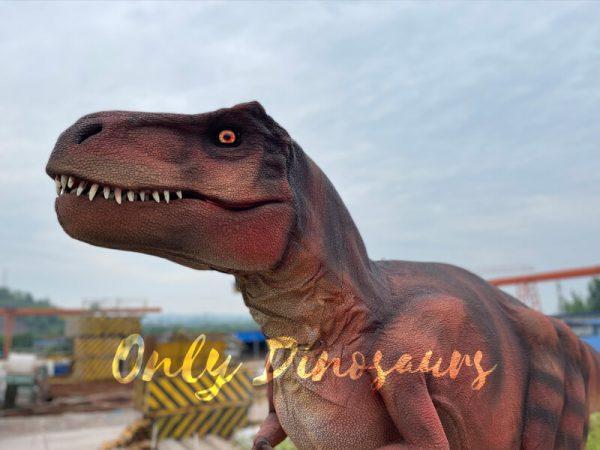 Lifelike-Hidden-Legs-T-Rex-Dinosaur-Costume-for-Sale1