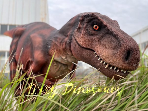Lifelike-Hidden-Legs-T-Rex-Dinosaur-Costume-for-Sale2