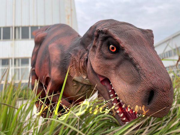 Lifelike-Hidden-Legs-T-Rex-Dinosaur-Costume-for-Sale3